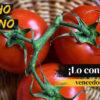 Èxit campanya Gazpacho Gitano